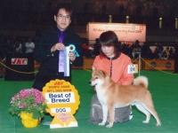 小太郎号2009・2010年、2年連続ベストオブブリードを獲得