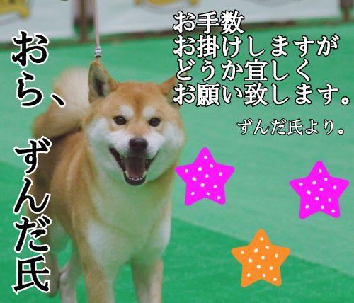 18-04-17-03-08-03-068_deco.jpg